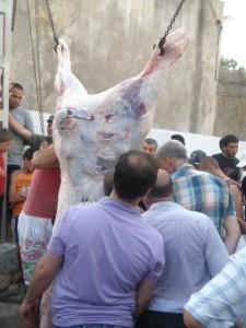 Manifestation culturelle au profit de la fontaine du quartier Madal à Djemâa-Saharidj dans ACTUALITÉ dsc005557-225x300