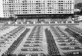 algeriades-stade-du-20-aout-en-1969 La place aux jeunes ! dans ACTUALITÉ