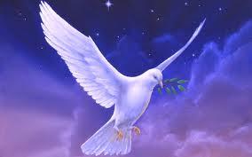 ALGÉRIE / Le motif de cette conversion massive et progressive au... christianisme dans ACTUALITÉ colombe